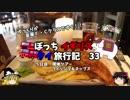 【ゆっくり】イギリス・タイ旅行記 33 昼食 フィッシュ&チップス