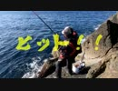 【魚釣り】 俺の刺し餌グレに届け!!part