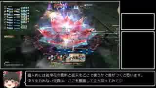 【FF14】太い震天が魔列車に入っちゃう!.