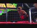 【WWE】ユニバ―サル王座挑戦者決定戦エリミネーション・チェンバー(3/3)【EC18】