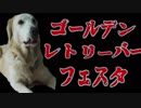 【SNSまとめ】ドラマ「柴犬だいふくのワン