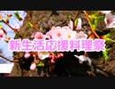 【恵一印】新生活応援料理祭【告知】