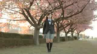 【しらす+】 桜ノ雨 【踊ってみた】