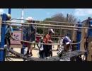 【大泉緑地:冒険ランド】アスレチック遊具で遊ぶあい♥お出かけ すべり台 外遊び 公園
