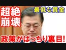 【韓国経済が超絶崩壊に向かってまっしぐら】 文在寅の経済政策がばっちり裏目!最...