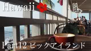【ゆっくり】南国ハワイ一人旅 Part12