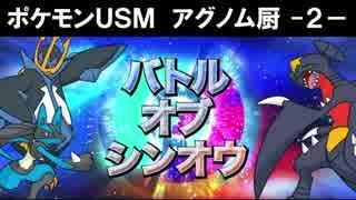 【ポケモンUSM】アグノム厨-2-【バトルオブシンオウ編】