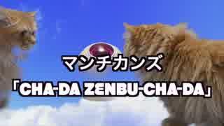 【猫アニソン】ドラゴンボール CHA-LA HEAD-CHA-LA【マンチカンズ】