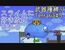 お前のためのスライム狩り [terraria]武器種縛りで世界侵攻 #5 [4人実況]