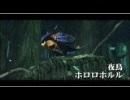 NGC『モンスターハンターダブルクロス Nintendo Switch Ver.』生放送 第5回  2/3
