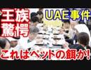 【UAE王族が韓国料理を見た瞬間がすごい】 これは、これはなんだ!ペットの餌な...