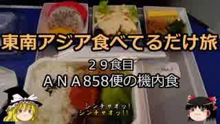 【ゆっくり】東南アジア食べてるだけ旅 29