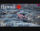 【ゆっくり】南国ハワイ一人旅 Part14 キラウエア火山②