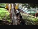 ★【蜻蛉池公園:こどもの国】ウッディロープをよじ登って、全長56mのローラーすべり台を母と一緒に滑るあい(滑り撮り!)♥TONBOIKE  PARK  お出かけ★