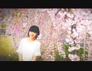 【月野奈月】ハルイチ。 踊ってみた【春だよ】