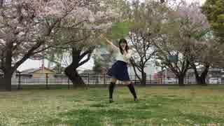 【初投稿】バタフライ・グラフィティ 踊っ