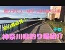 春だ!デビューだ!魚釣りだ!釣りデビューするなら春!「神奈川県釣り場紹介」+α