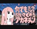 第79位:琴葉姉妹とゆっくりのぐだぐだつーりんぐ【Part12】香取神宮