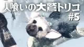 【実況】人喰いの大鷲トリコ 実況風プレイ part5