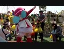 【鈴鹿サーキット:ぶんぶんうんどうかい】プッチハッチ(はち)応援団に入ってみんなを応援!ポンポンを持ってフリフリダンスをするあい❤遊園地 お出かけ イベント キャラクター