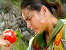 星獣戦隊ギンガマン 第二十一章「トマトの試練」