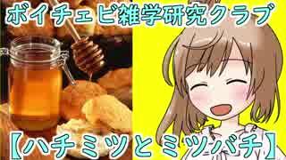 【雑学研究クラブ】蜂蜜とミツバチ Part1