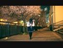 【しらす+】僕らの街に愛が降る夜だ【踊ってみた】