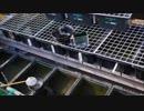 日本淡水魚 10年ぶりのメダカ飼育に挑戦! その6