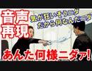【韓国水かけ姫の火病再現音声】 あんた何様ニダァ!私、気が狂いそうニダ!だから...