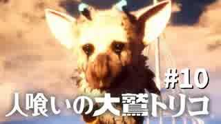 【実況】人喰いの大鷲トリコ 実況風プレイ part10