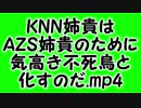 KNN姉貴はAZS姉貴のために気高き不死鳥と化すのだ.mp4
