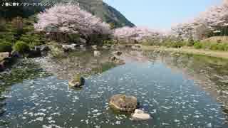 【生海月】なまくらじお【2018.4.23】