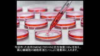 自宅で細胞培養液作って心臓細胞(鶏)を培養してみた (DIY-DMEM)
