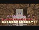 【APヘタリア】西露仏南伊で大きめの村を作るVol.06【Minecraft】