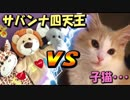 子猫vs猛獣たち