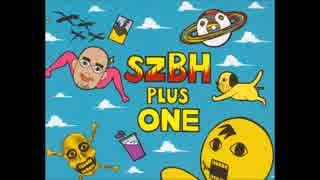 SZBH(3)