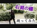 【踊ってみた】右肩の蝶 / 鏡音レン【紅子グリオット】