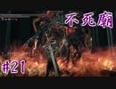 【ソウルシリーズツアー3章】ダークソウル2~スカラーオブザファーストシン~part21