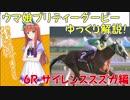 【第6R】 ウマ娘プリティーダービーに登場するキャラクターのモデルになった競走馬...