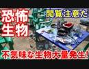 【韓国に不気味な生物が大量発生】 漢江で恐ろしい噂が広まっている!これは完全に...