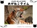 【イケボ&カワボのトークバラエティ】#162 めがねこタイム