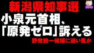 【新潟県知事選】告示前日に小泉元首相が