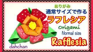 【折り紙】通常サイズで作るラフレシア(花)