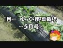 月一 ゆっくり野菜栽培 Part10