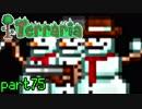 【Terraria】ハードコアでterraria最強完璧を目指す ~part75~
