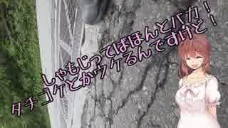 【MT-03】ささらん車載でpart17 富士山周