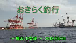 【横浜・D突堤】 おきらく釣行 【2018052