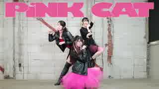 【Ä】 PiNK CAT 【踊ってみた】