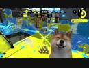 スプラトゥーン大好きな犬がガチアサリやるだけ