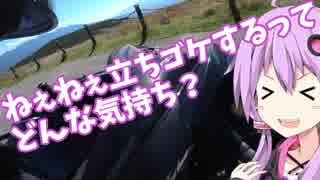 【Ninja1000】ビーナスラインツーリング